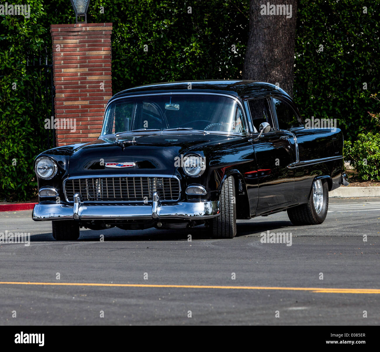 Tattoo Collector Stock Photos Images Alamy 1955 Chevy 2 Door Sedan For Sale A Image