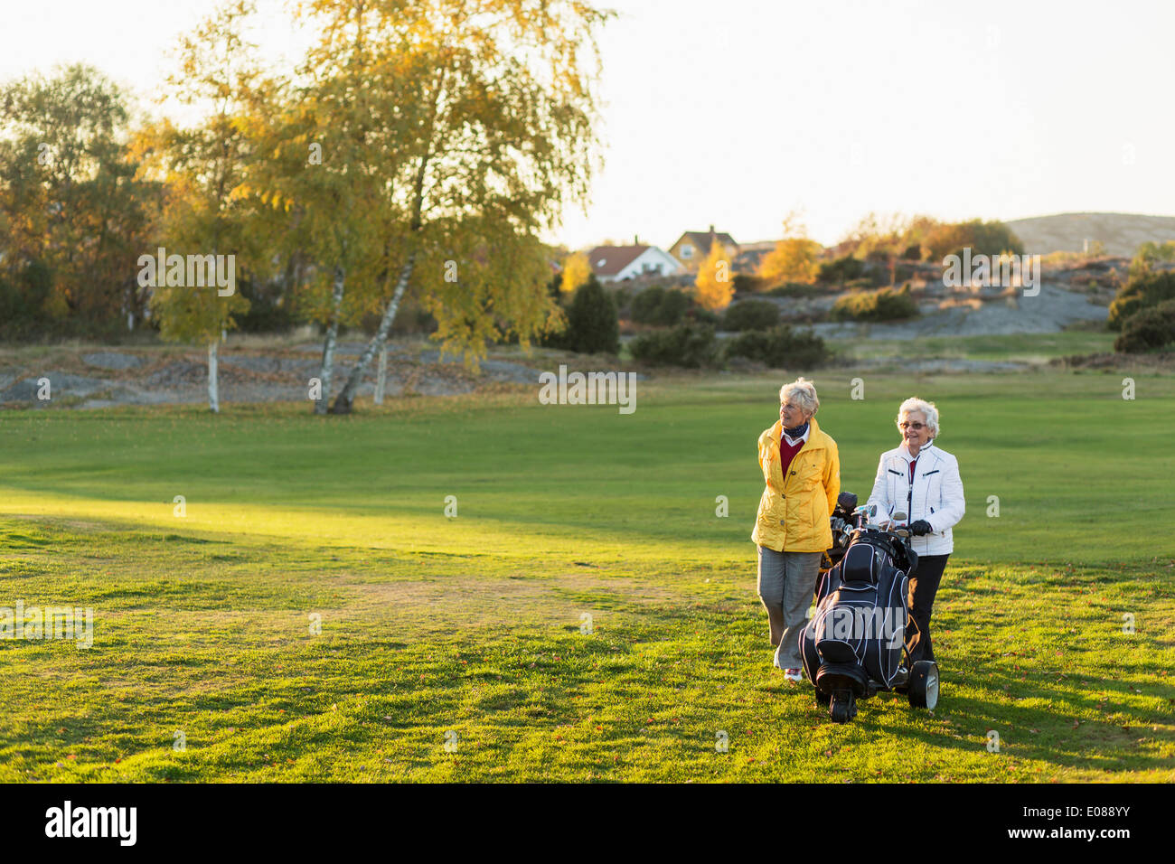 Senior female friends walking with golf bags on course - Stock Image