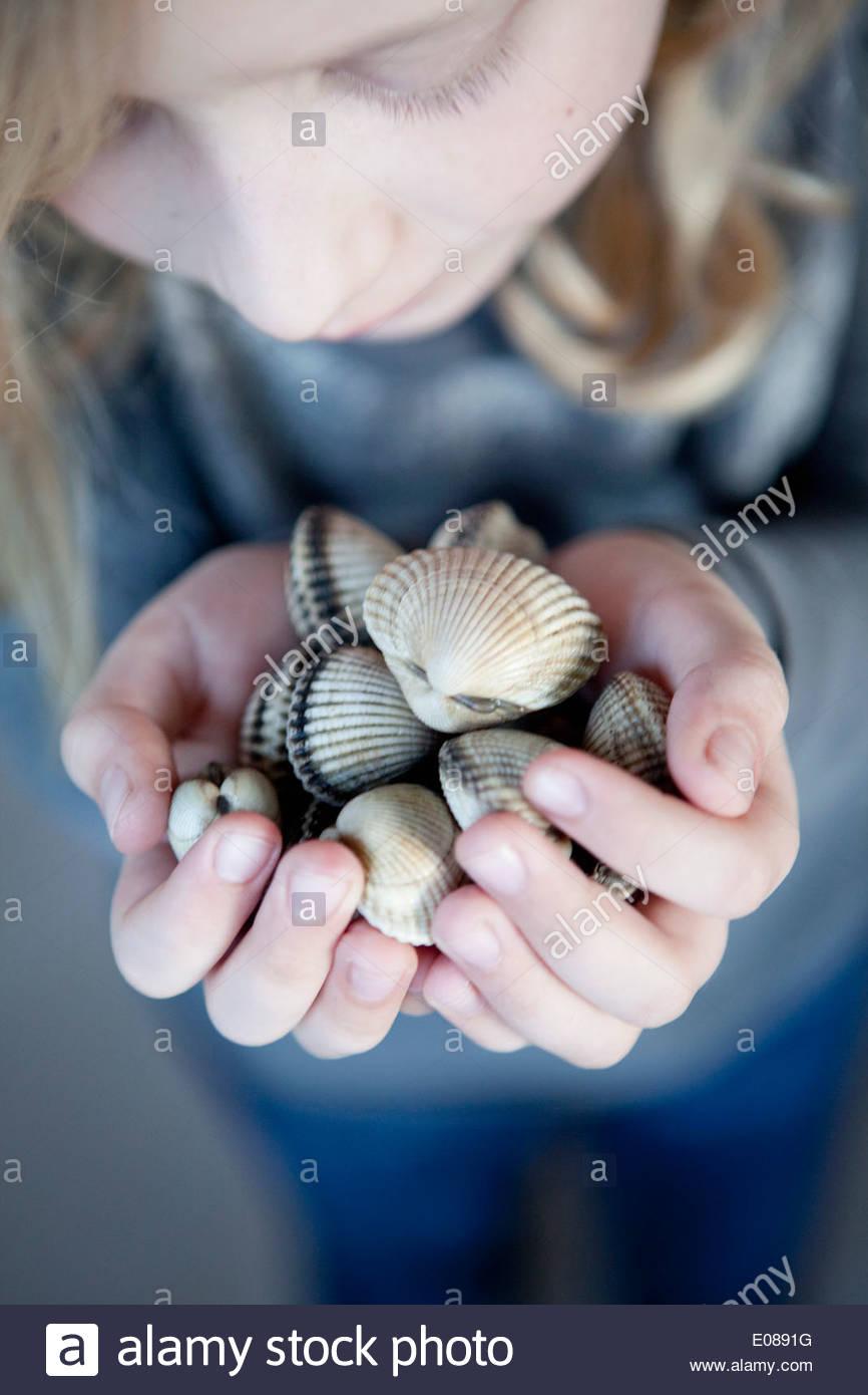 High angle view of girl holding seashells - Stock Image