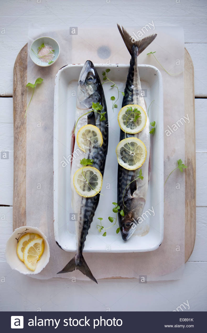 Directly above shot of fishes garnished with lime slices - Stock Image