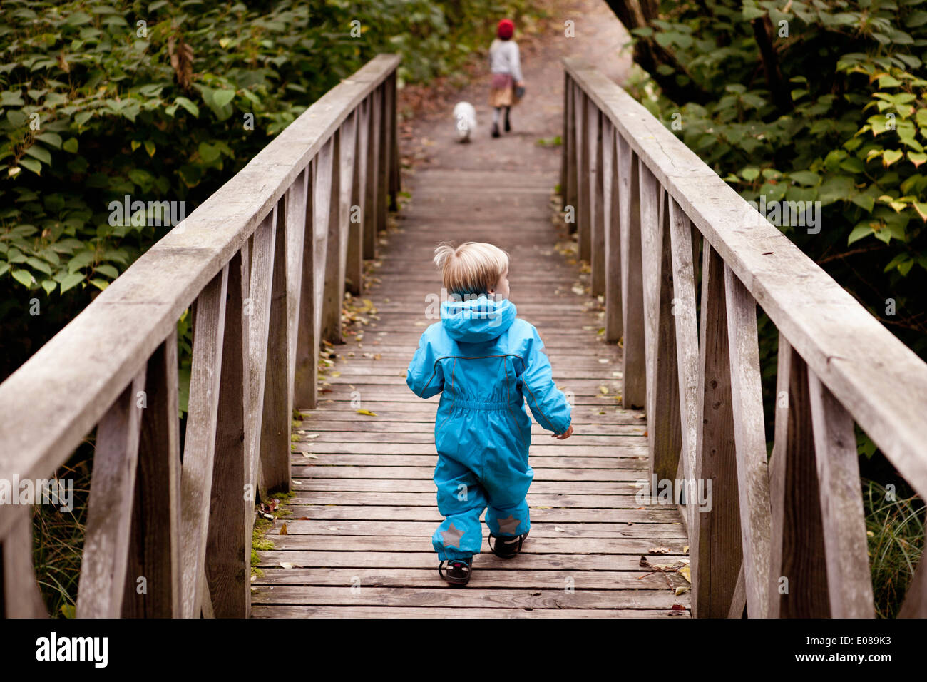 Rear view of boy crossing bridge in forest - Stock Image