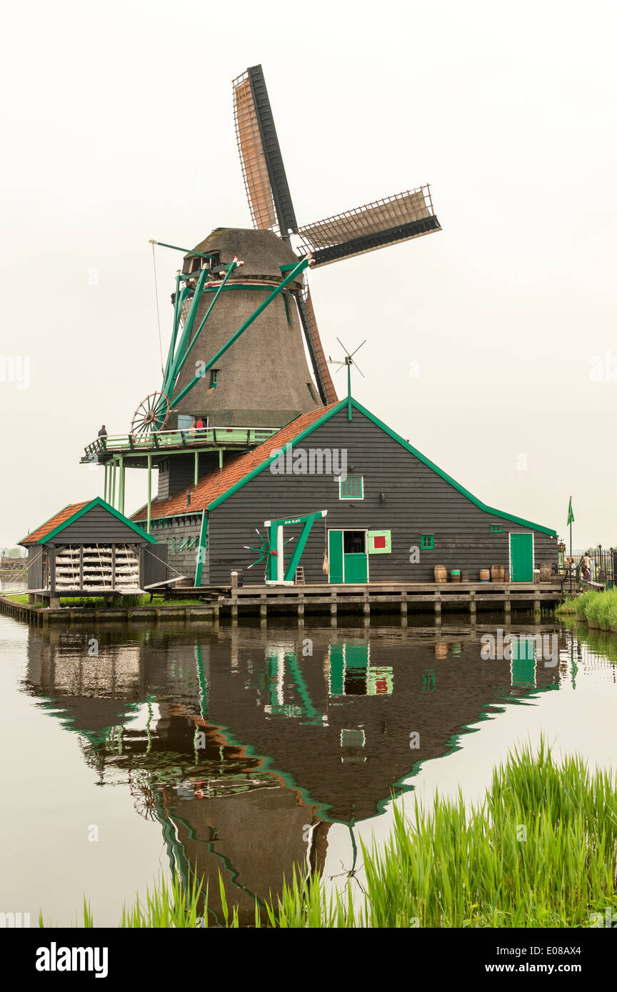 DE KAT  DUTCH WINDMILL AND CANAL AT ZAANSE SCHANS HOLLAND IN SPRINGTIME - Stock Image