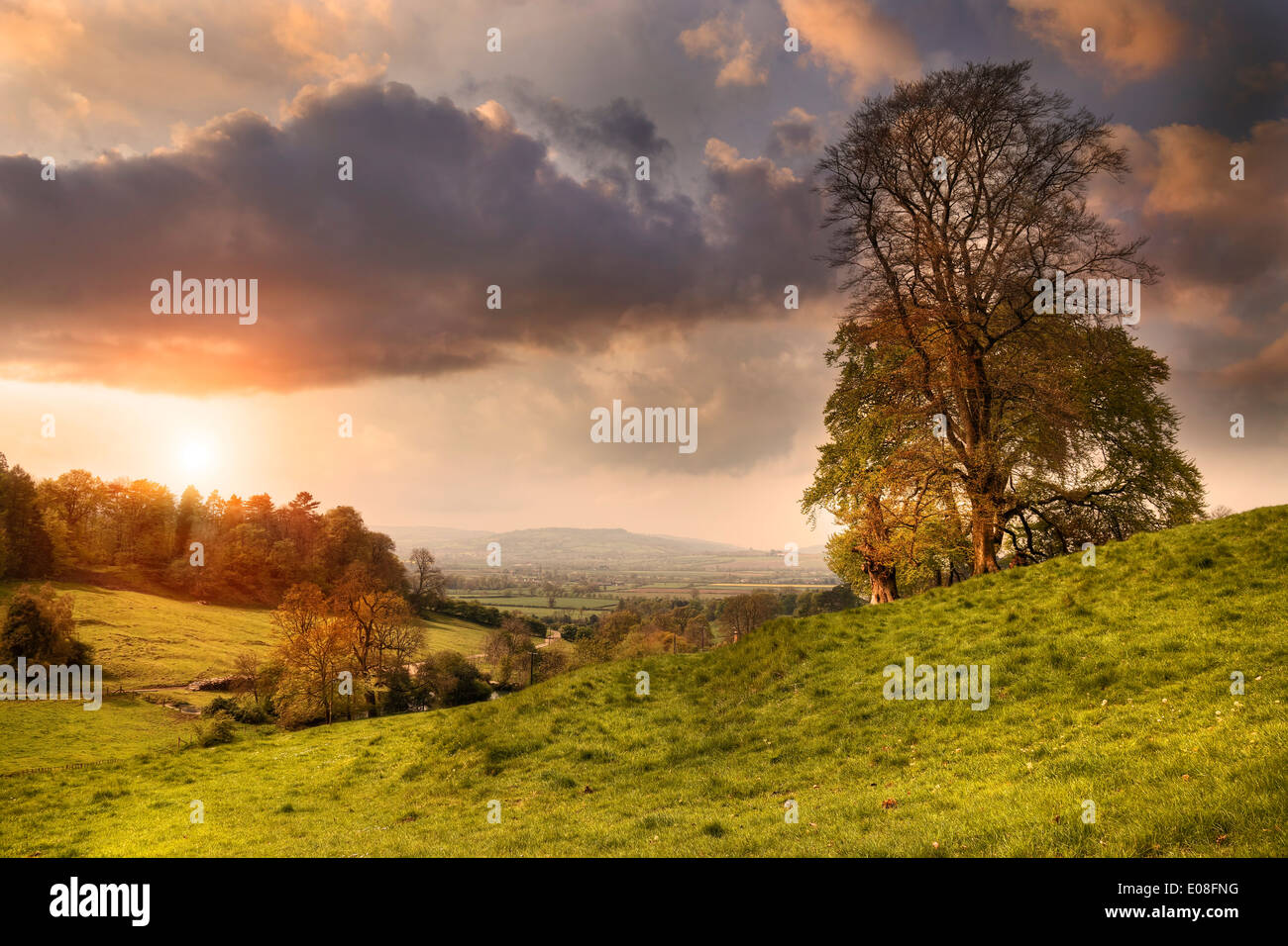 View from Lidcombe Hill near Stanway, Gloucestershire, England. Stock Photo