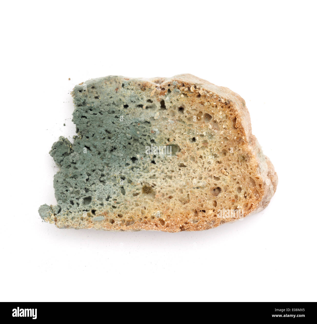 Moldy bread cut out isolated on white background - Stock Image
