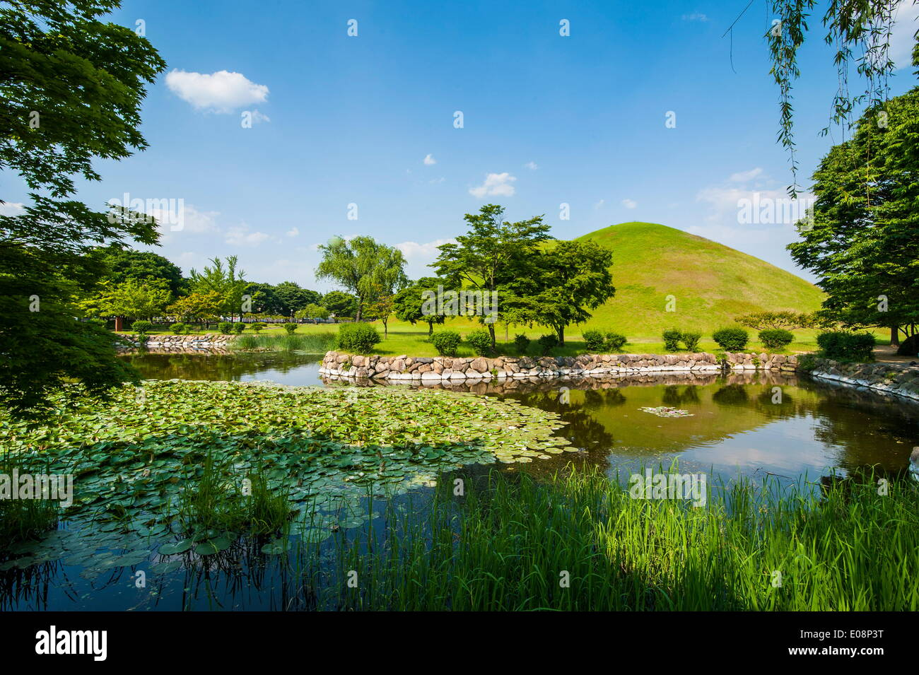 Tumuli park with its tombs from the Shilla monarchs, Gyeongju, UNESCO World Heritage Site, South Korea, Asia Stock Photo