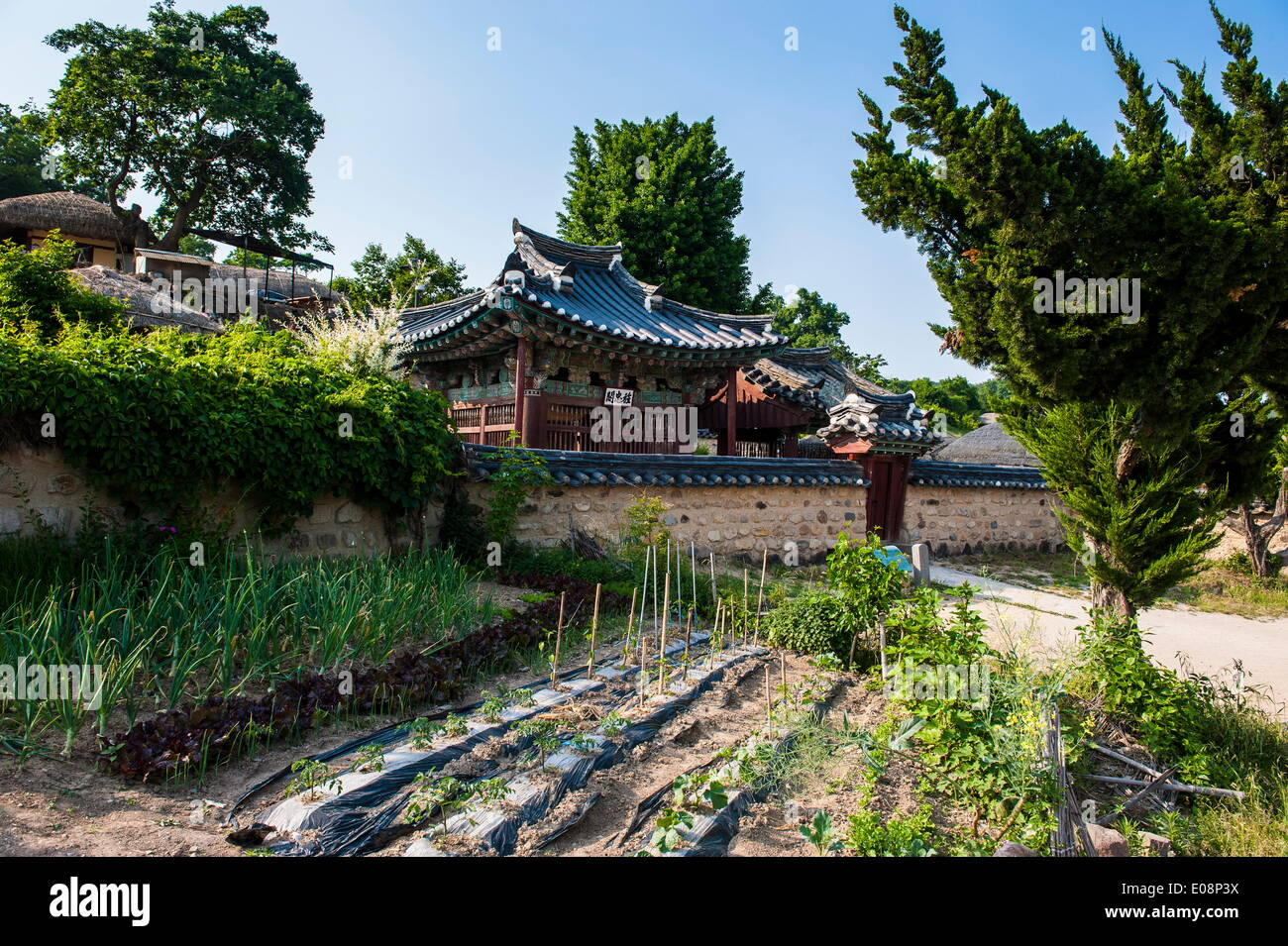Traditional wooden house in the Yangdong folk village near Gyeongju, South Korea, Asia - Stock Image