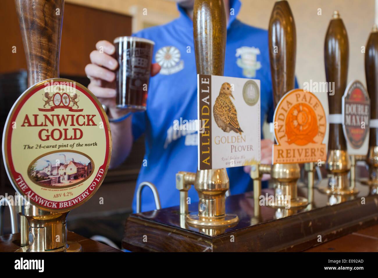 Alnwick Beer Festival, Alnwick, Northumberland, UK, September 2013 - Stock Image