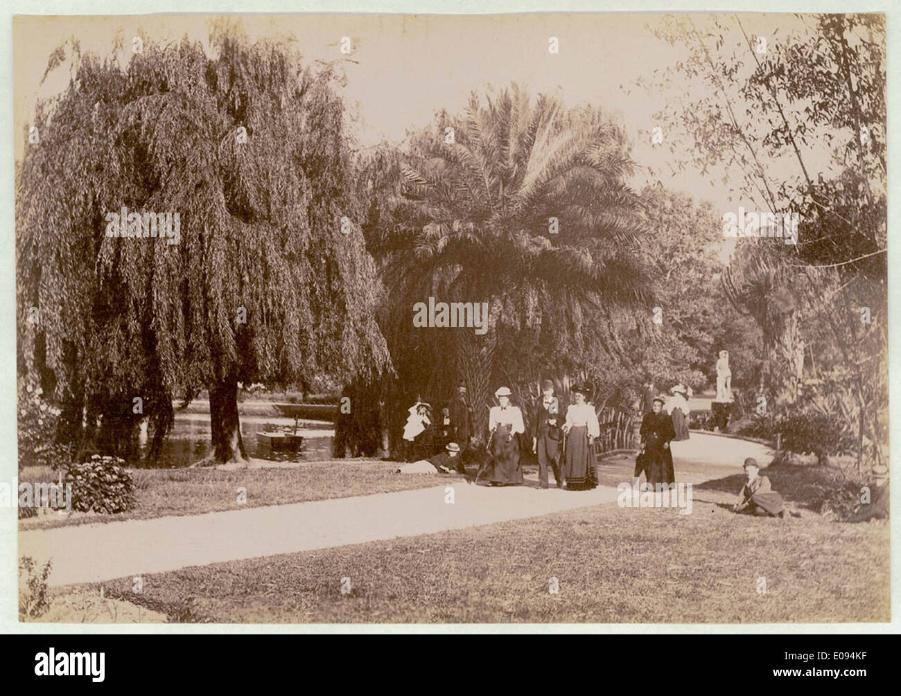 Botanical Gardens, Sydney, c. 1900-1910 Stock Photo