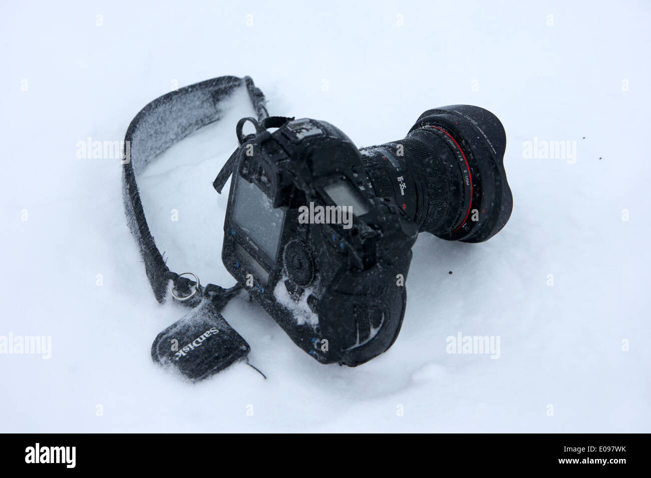 canon 1dsmk3 camera with 16-35 mk2 lens and sandisk cards owned by photographer Joe Fox getting buried in the snow antarctica - Stock Image
