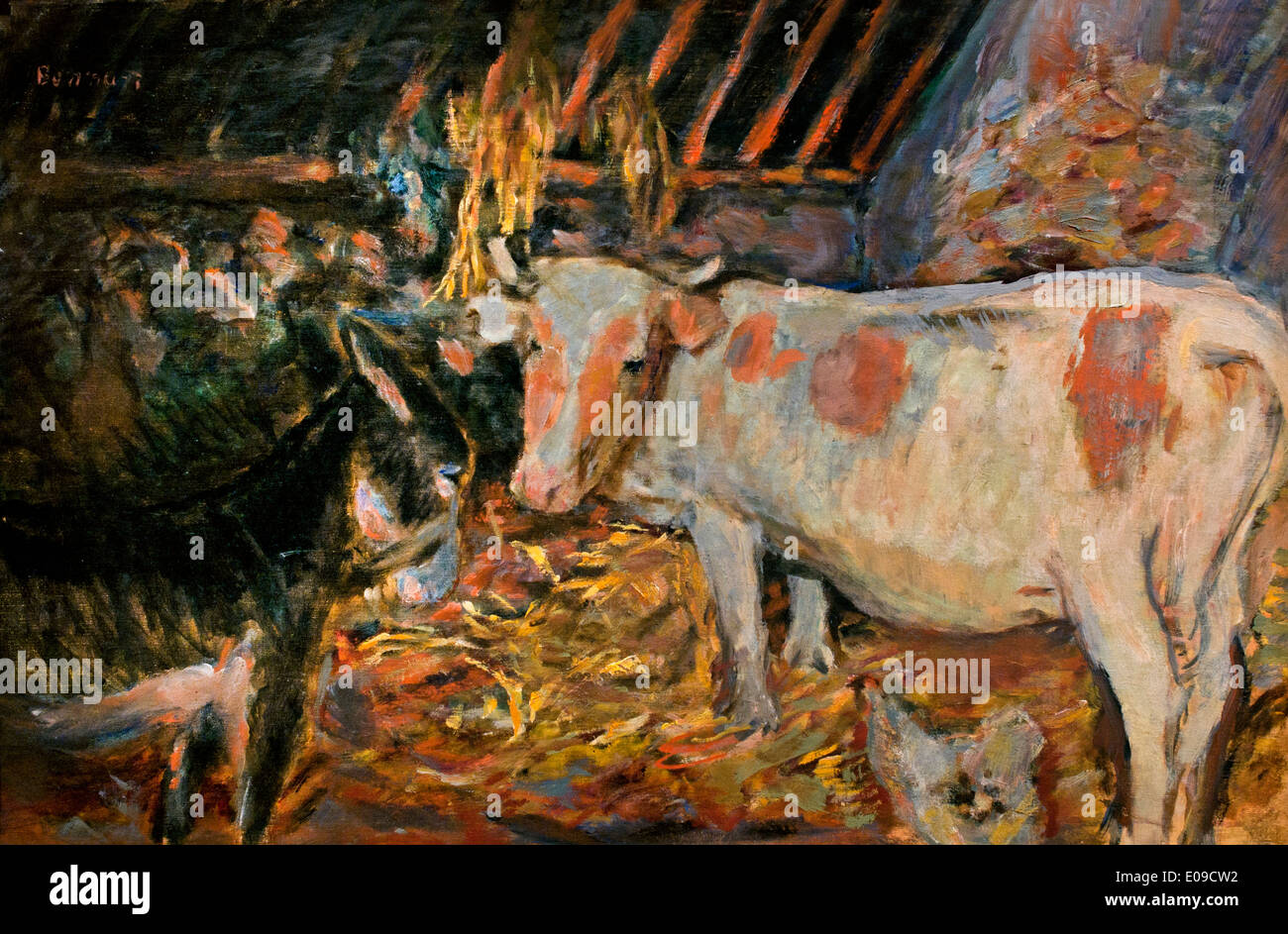 The Barn 1912 The cow in the Stable by Pierre Bonnard France French 1867 - 1947 - Stock Image