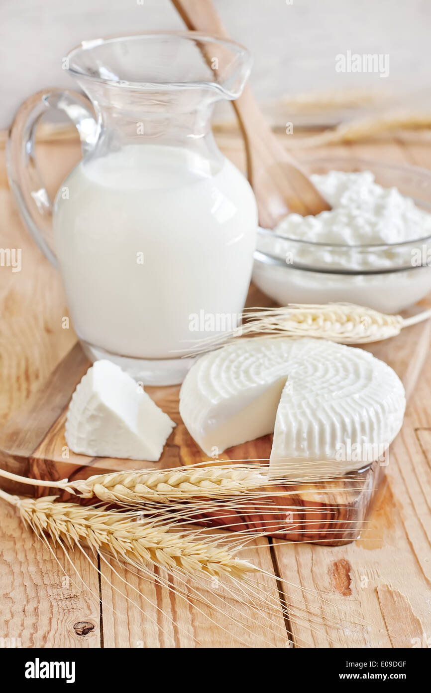 Milk, tzfat cheese and cottage cheese with wheat grains. Symbols of judaic holiday Shavuot. Selective focus. - Stock Image