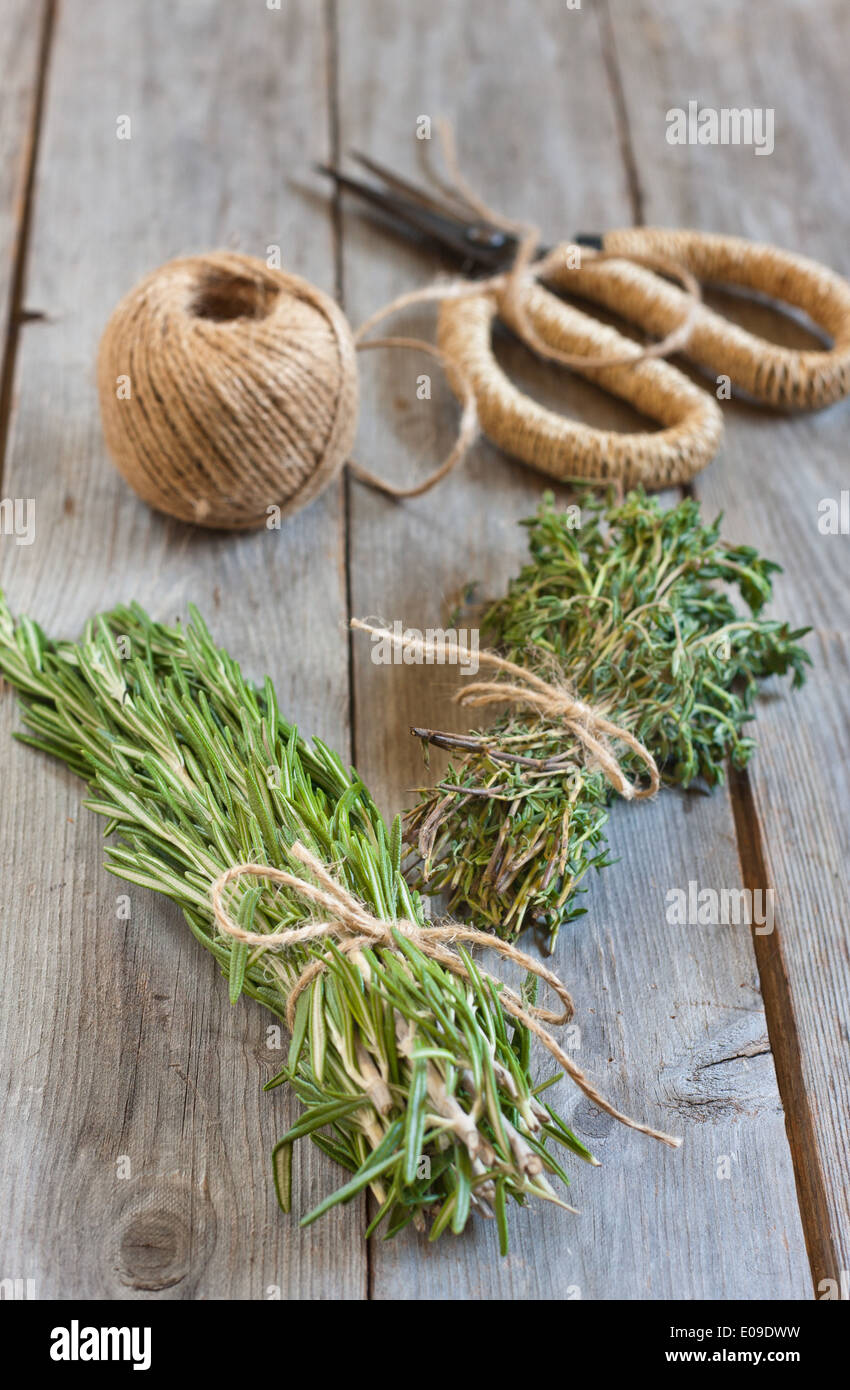Bunches of rosemary and thyme with old-fashioned rusty scissors. Selective focus. - Stock Image