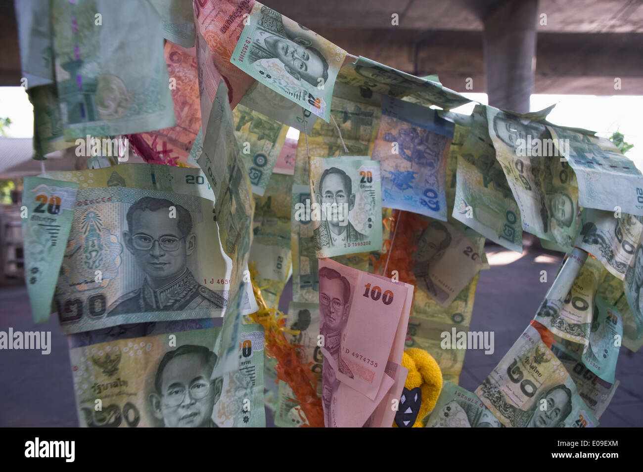 Thailand, Bangkok, Banknotes on fortune tree - Stock Image