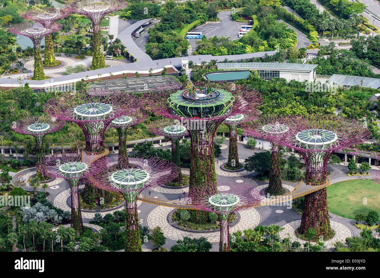 Asia, Singapore, Marina Bay, Gardens By The Bay, Supertrees