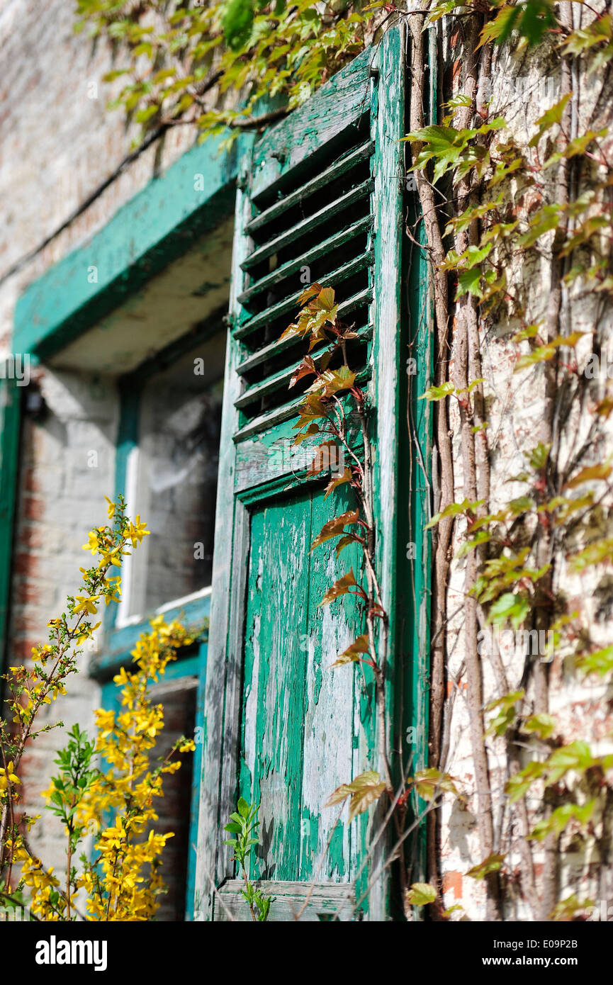 old shutters on a belgian farmhouse - Stock Image