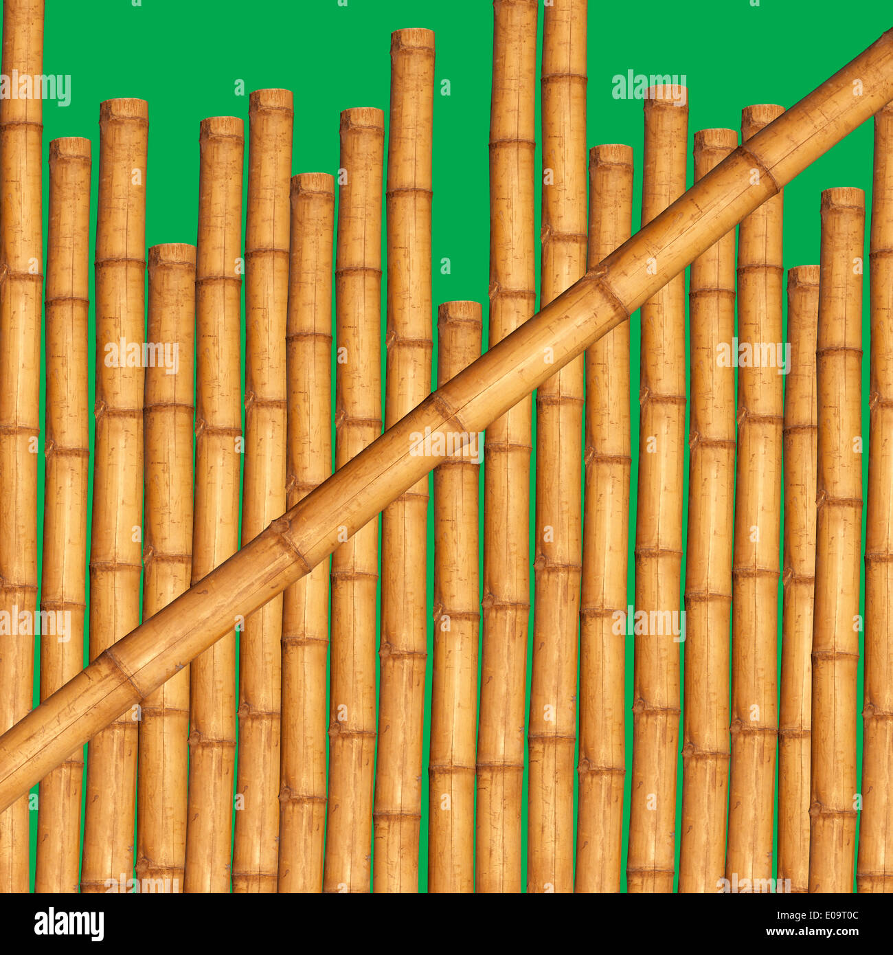 Bamboo sticks in front of green background Stock Photo