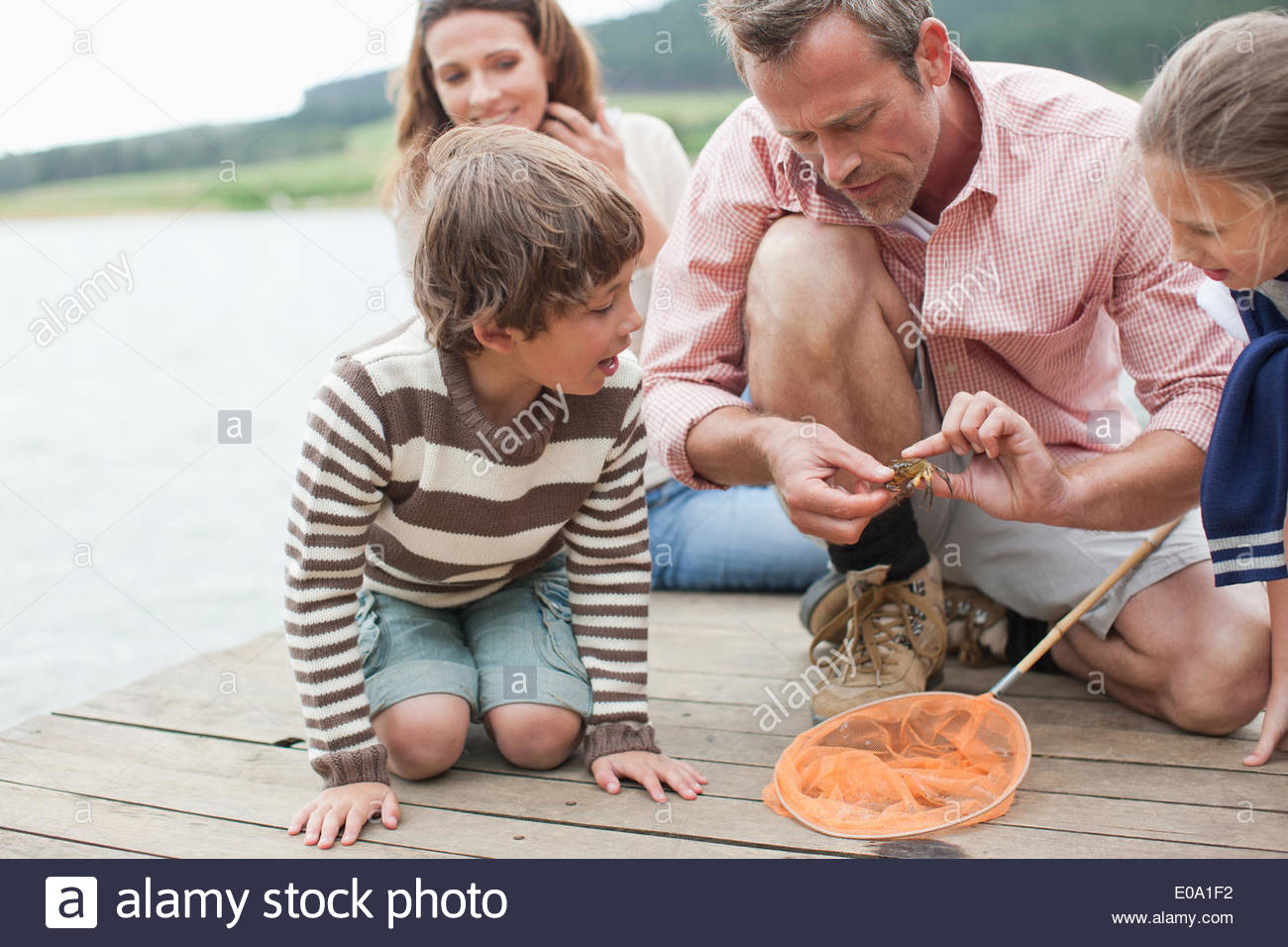 Father showing family small crab - Stock Image