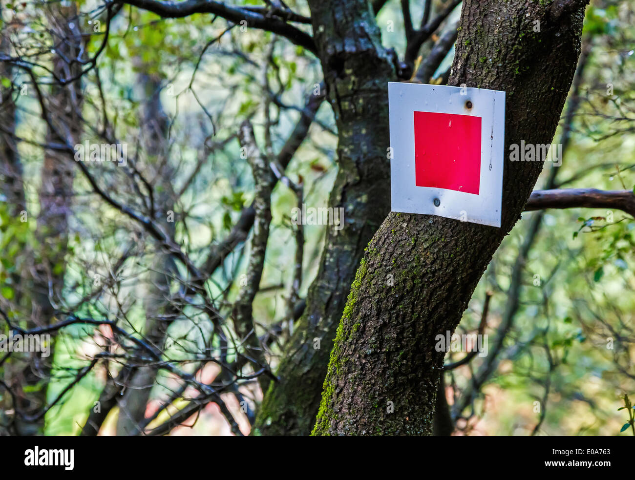 Red sign for dangerous path ahead for walkers deep in forest in