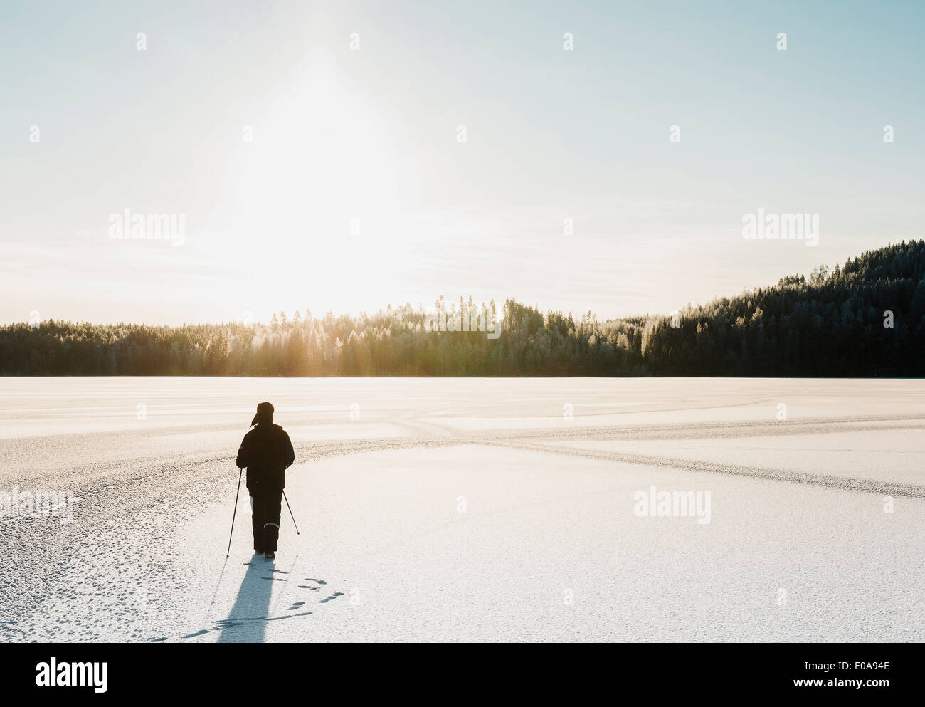 Mature man nordic walking through snow covered field - Stock Image