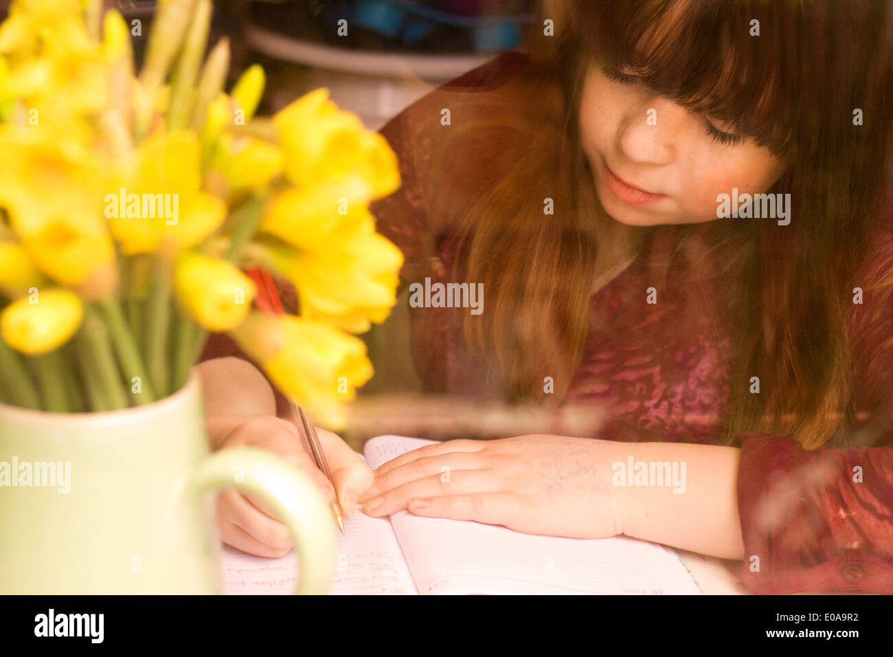 Girl writing by daffodils on desk - Stock Image