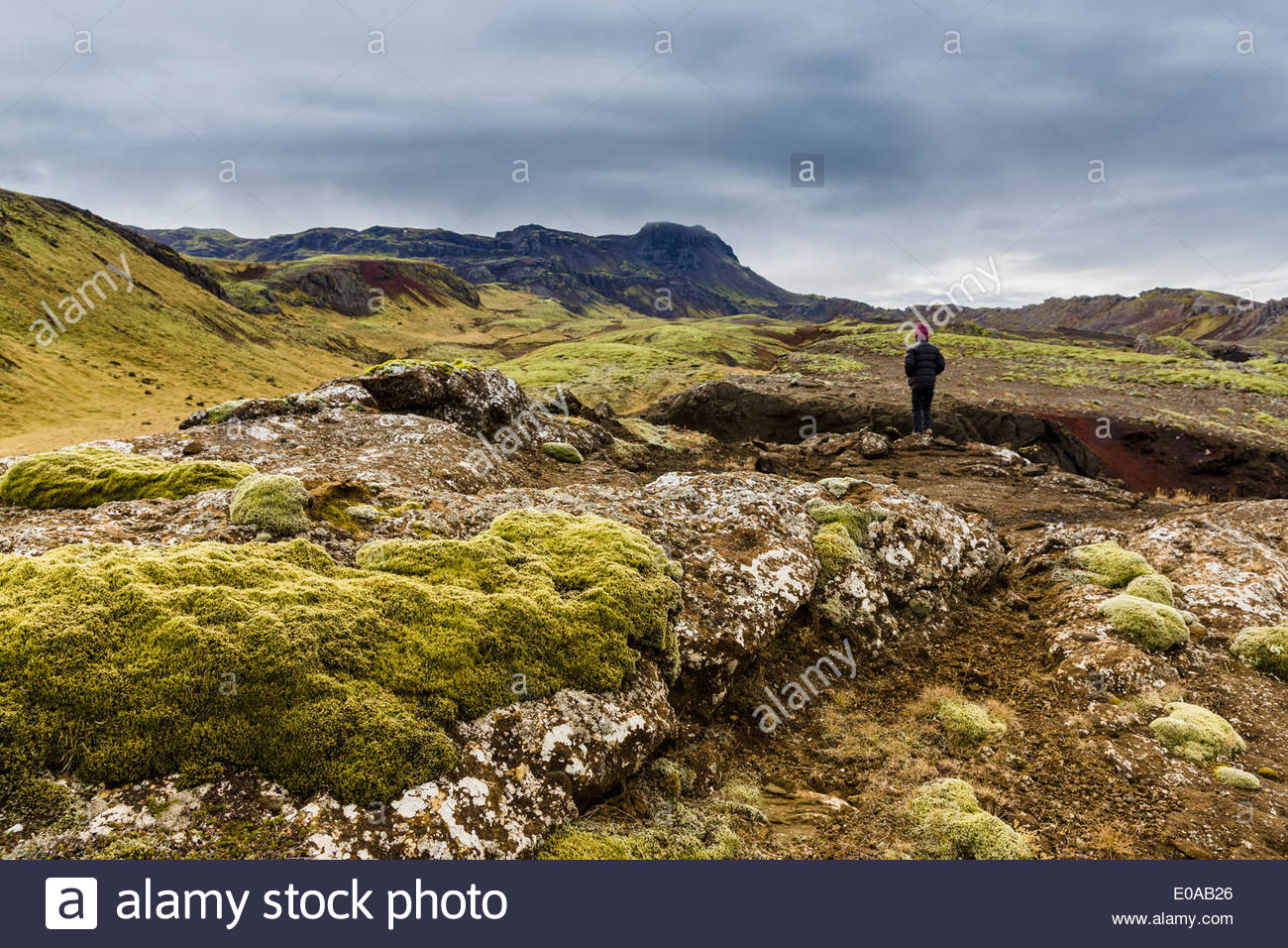 Boy gazing over volcanic landscape, Nesjavellir, Iceland - Stock Image