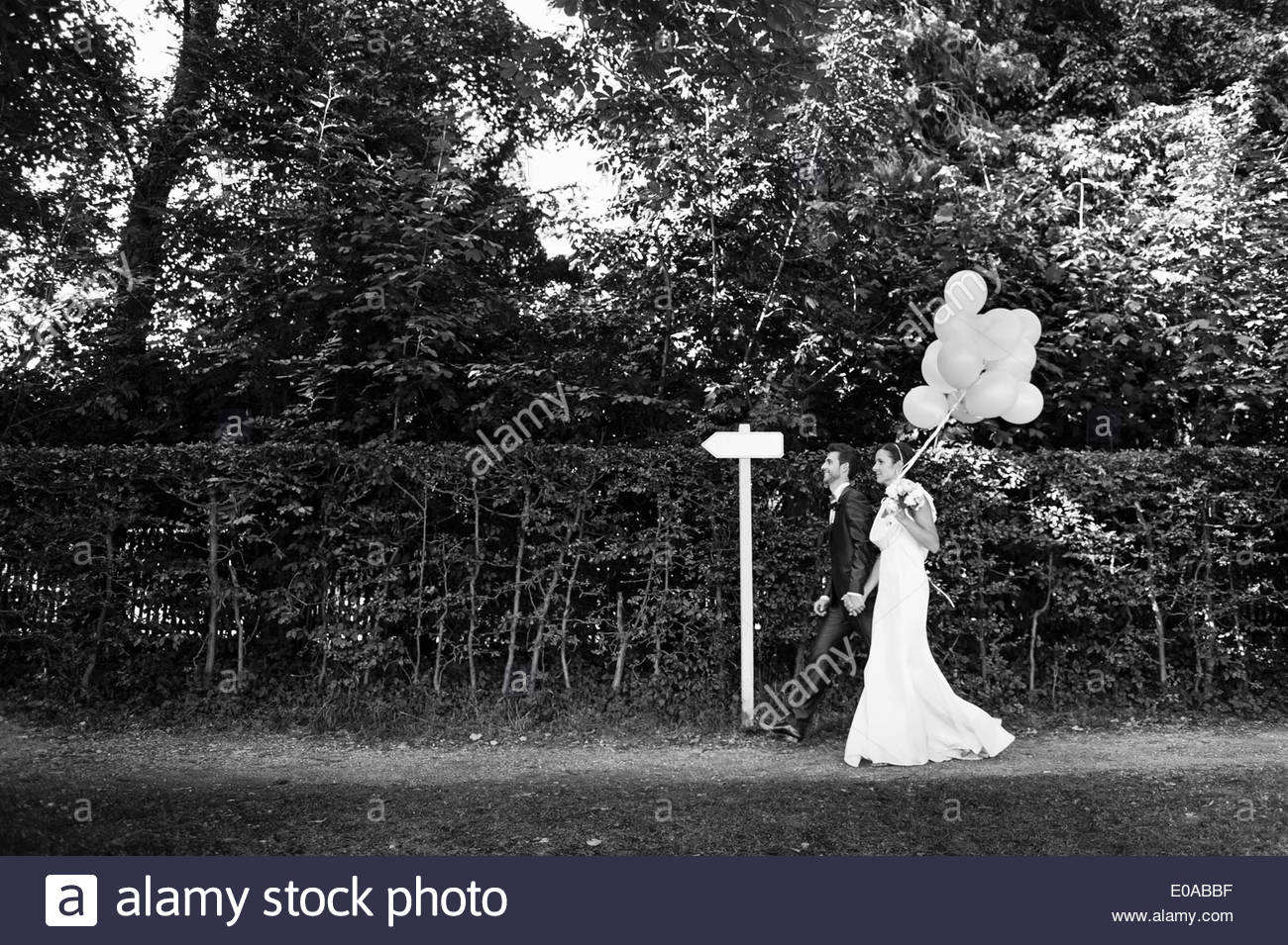 B&W image of mid adult bride and groom walking in garden - Stock Image