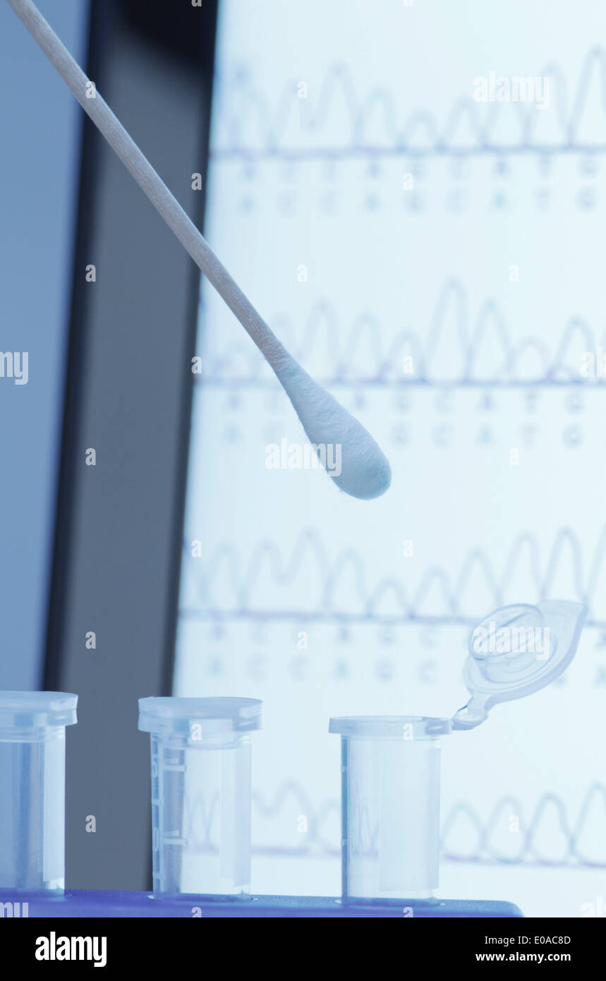 Cotton swab with saliva over microcentrifuge tubes - Stock Image