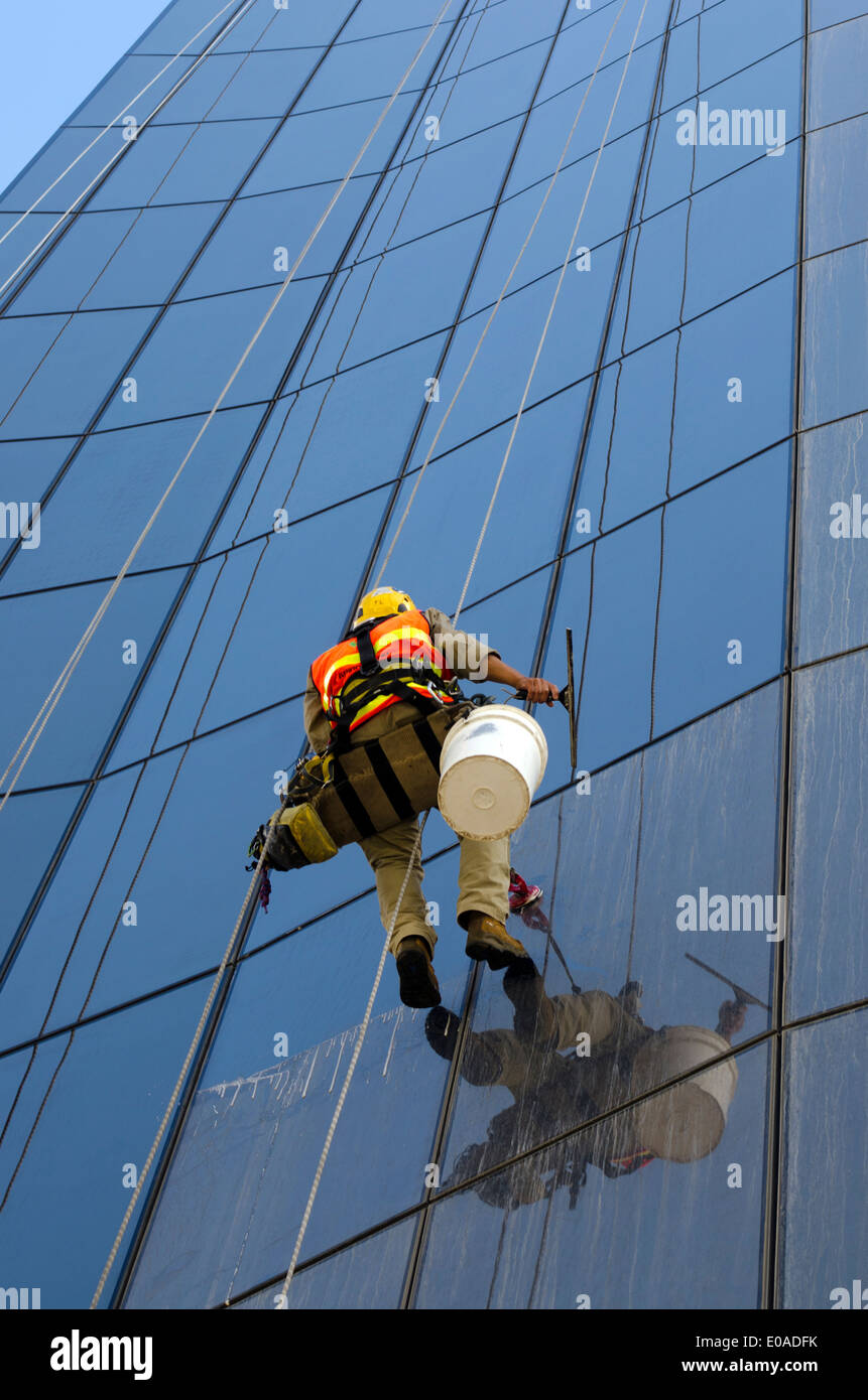 Window cleaner works on  high rise building - Stock Image