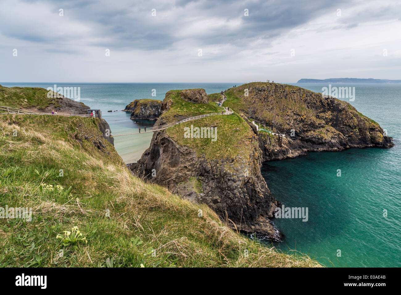 Carrick-a-rede Rope bridge Northern Ireland Antrim - Stock Image
