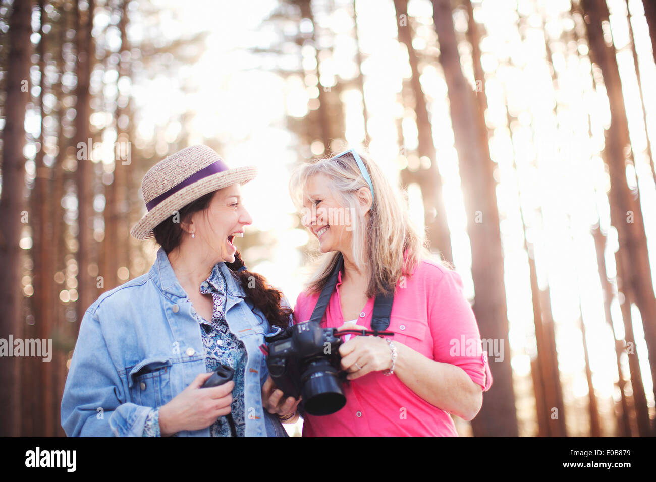 Two mature female bird watchers in forest - Stock Image