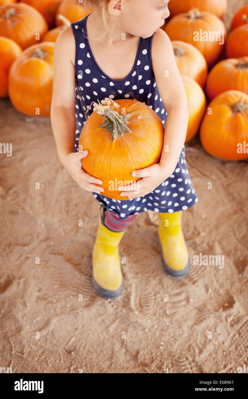 Girl picking pumpkin - Stock Image