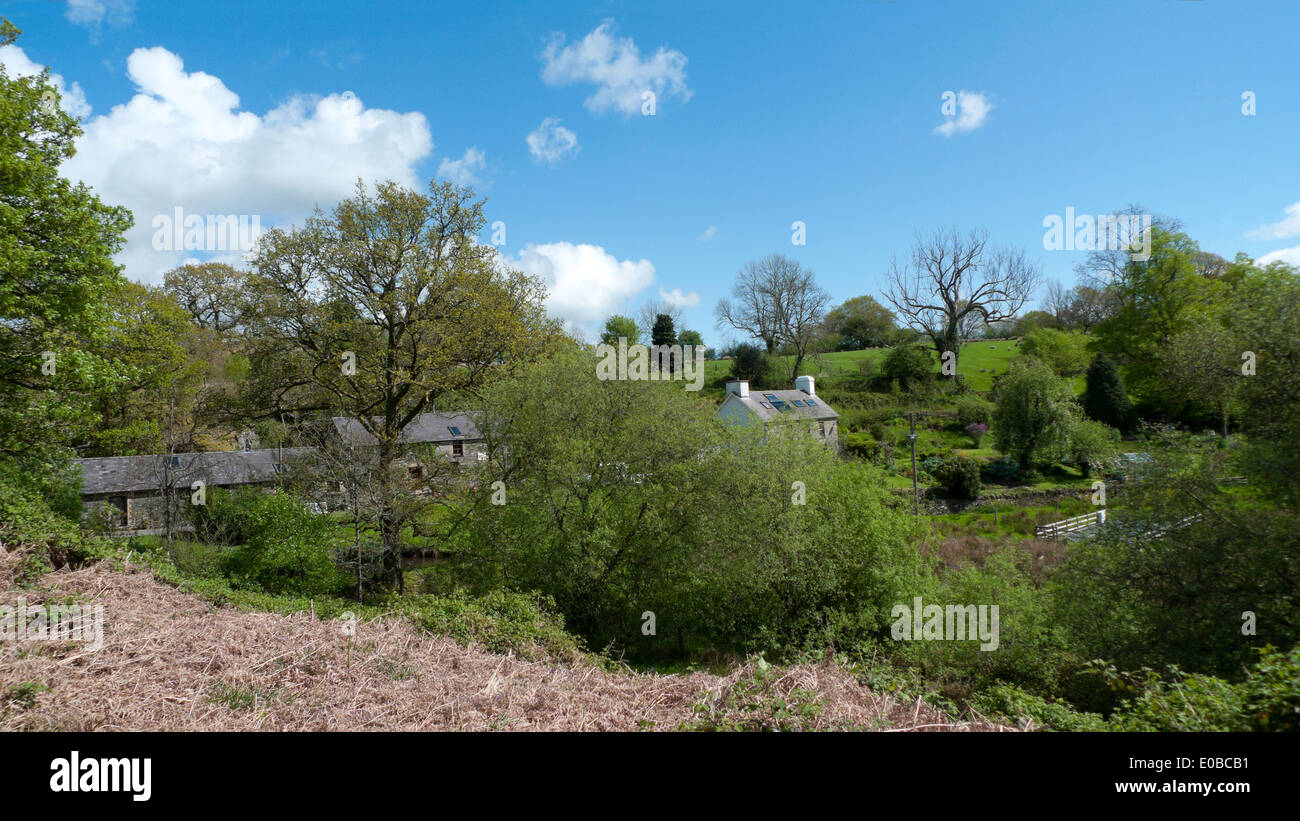 View of a rural smallholding in Carmarthenshire Wales UK KATHY DEWITT - Stock Image