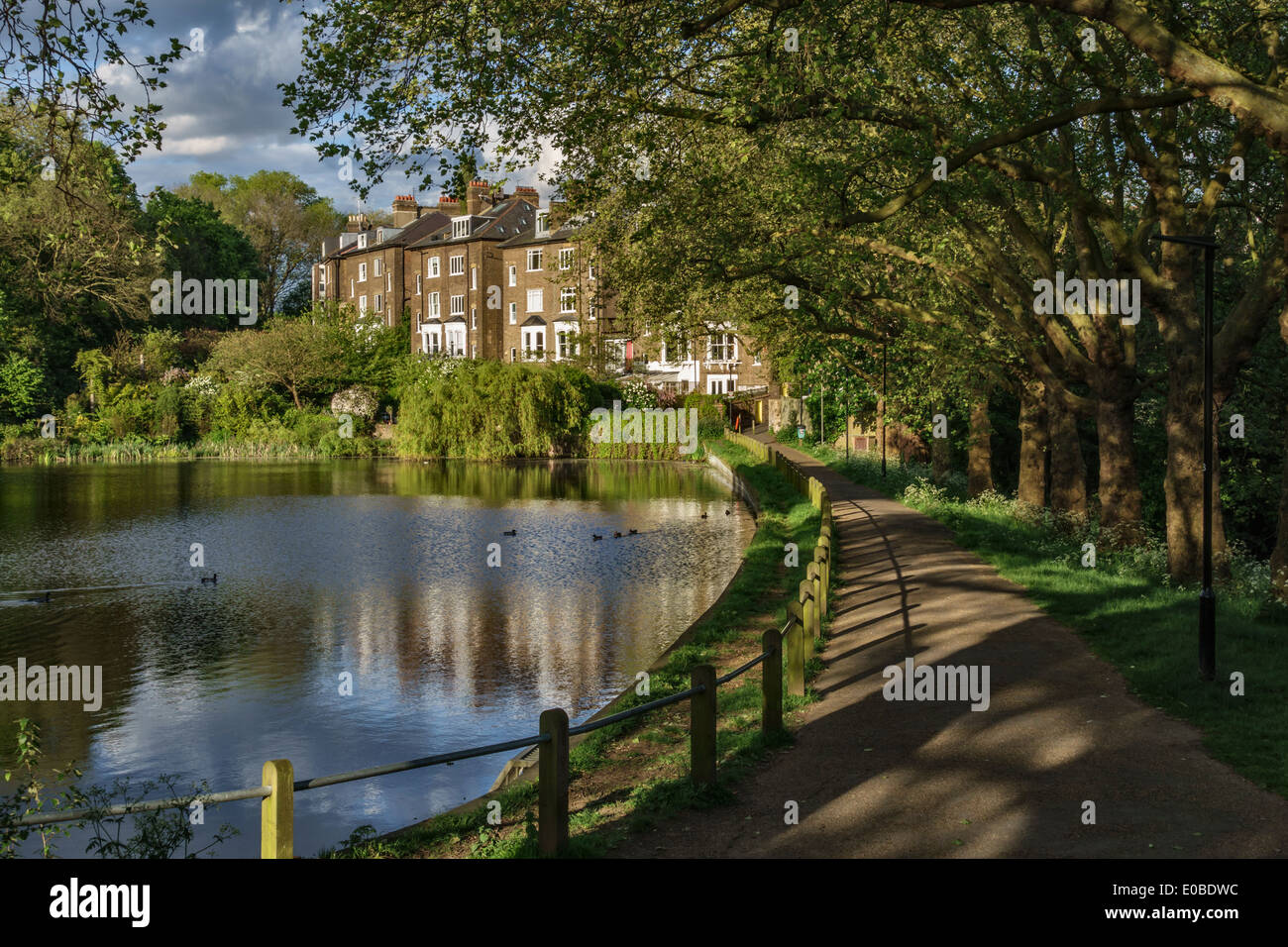 Hampstead No 2 Pond with the houses of South Hill Park Gardens, Hampstead Heath, London, UK - Stock Image