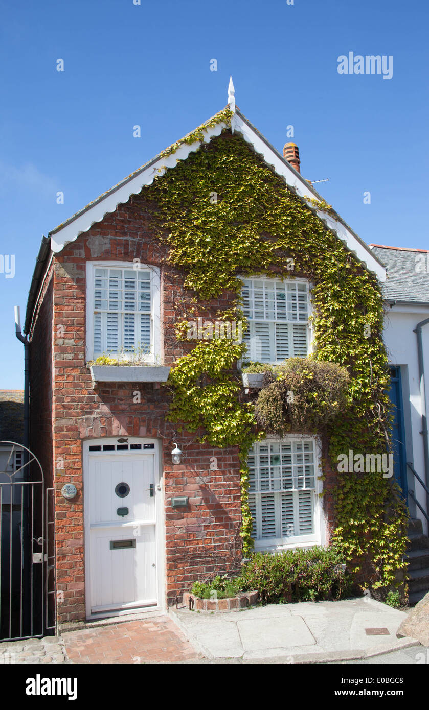 Cornish cottage with ivy in St Ives Cornwall Stock Photo