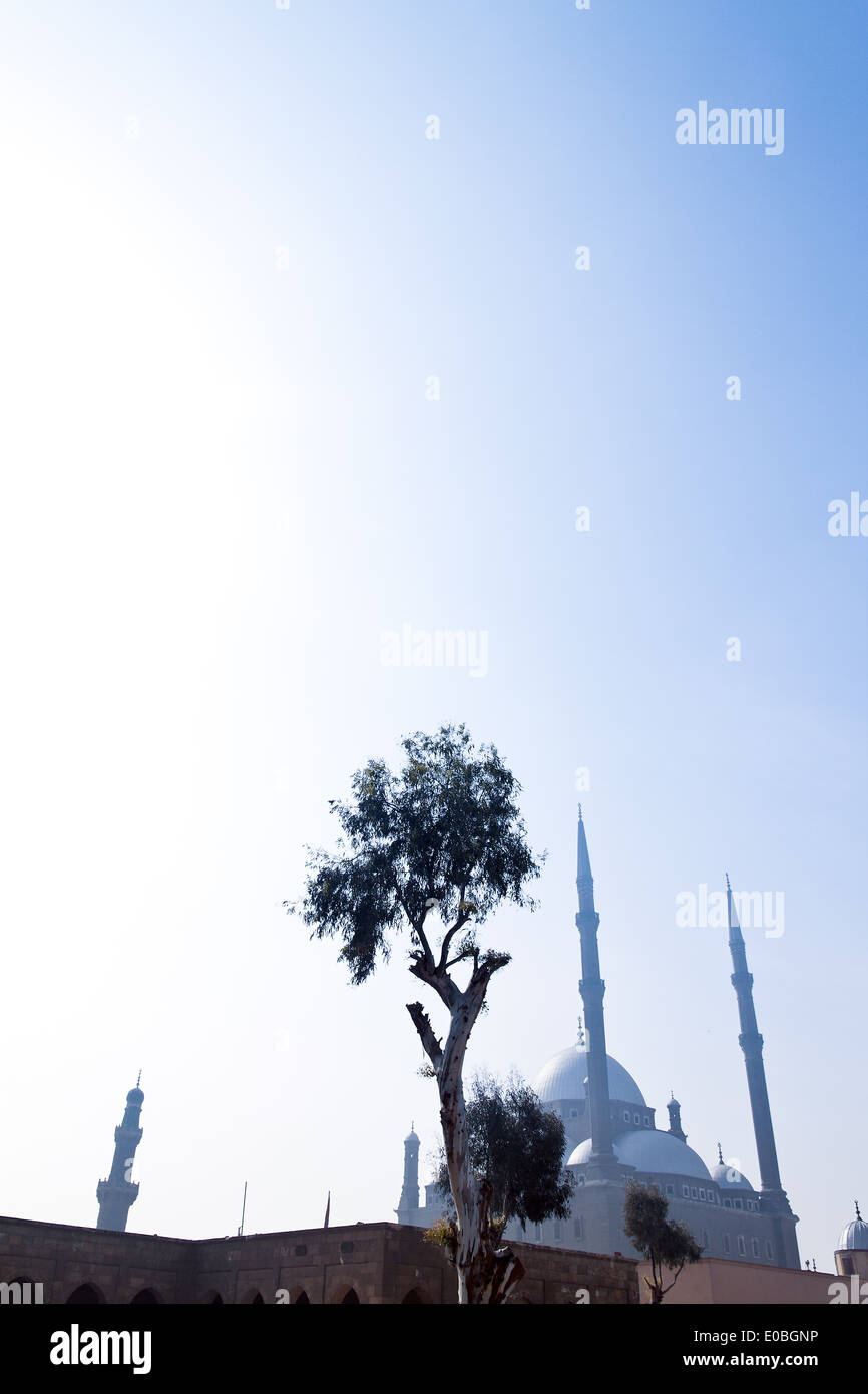 Egypt, Cairo. Mohammed Ali Moschee. Alabaster mosque Stock Photo