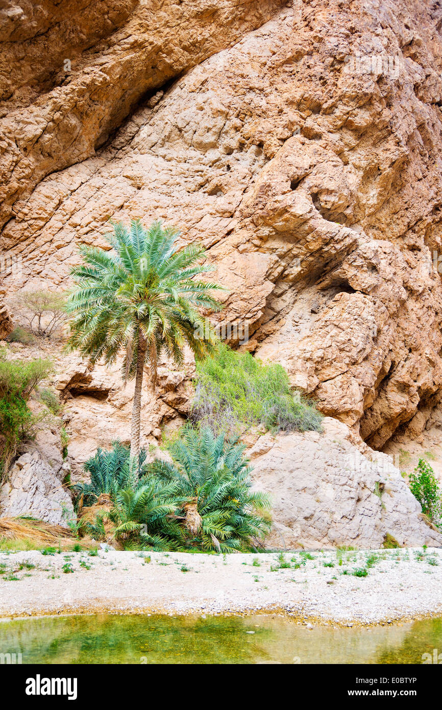 Image of Wadi Shab in Oman with rocks and palms - Stock Image