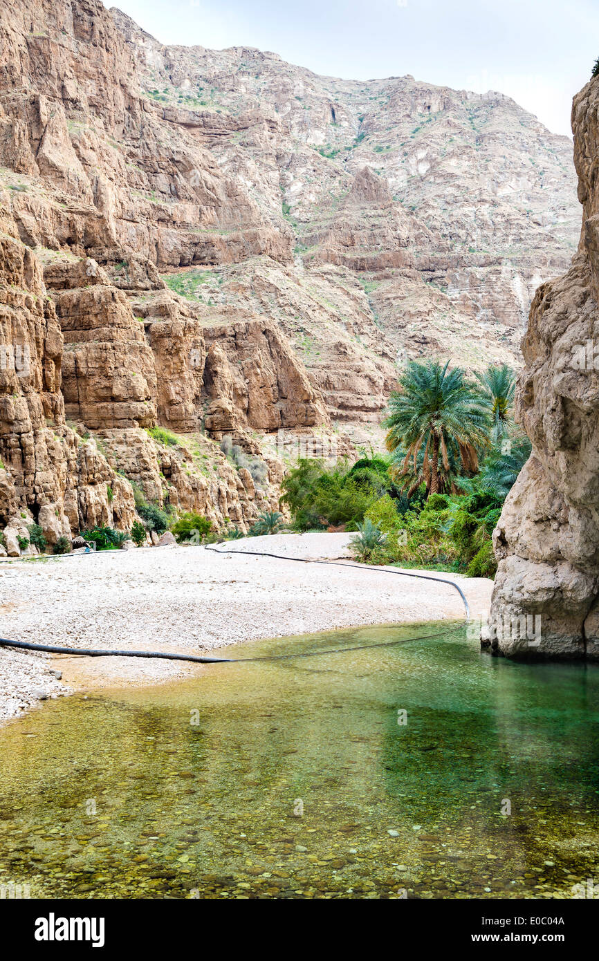 Image of Wadi Shab in Oman with water, rocks and palms - Stock Image