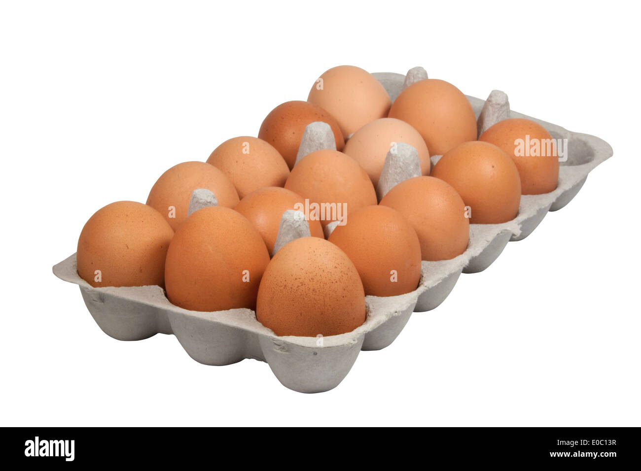 cardboard egg tray filled with freshly laid