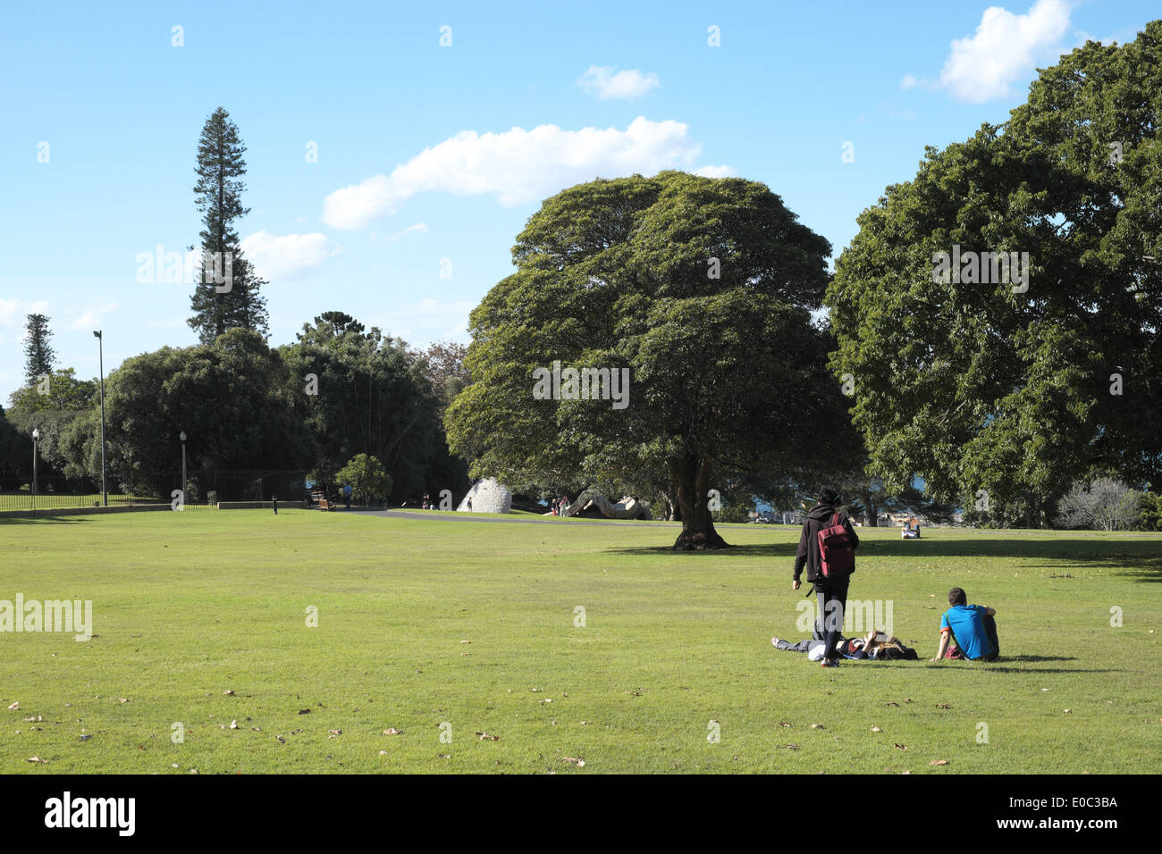 Royal Botanic Gardens in Sydney city centre, australia - Stock Image