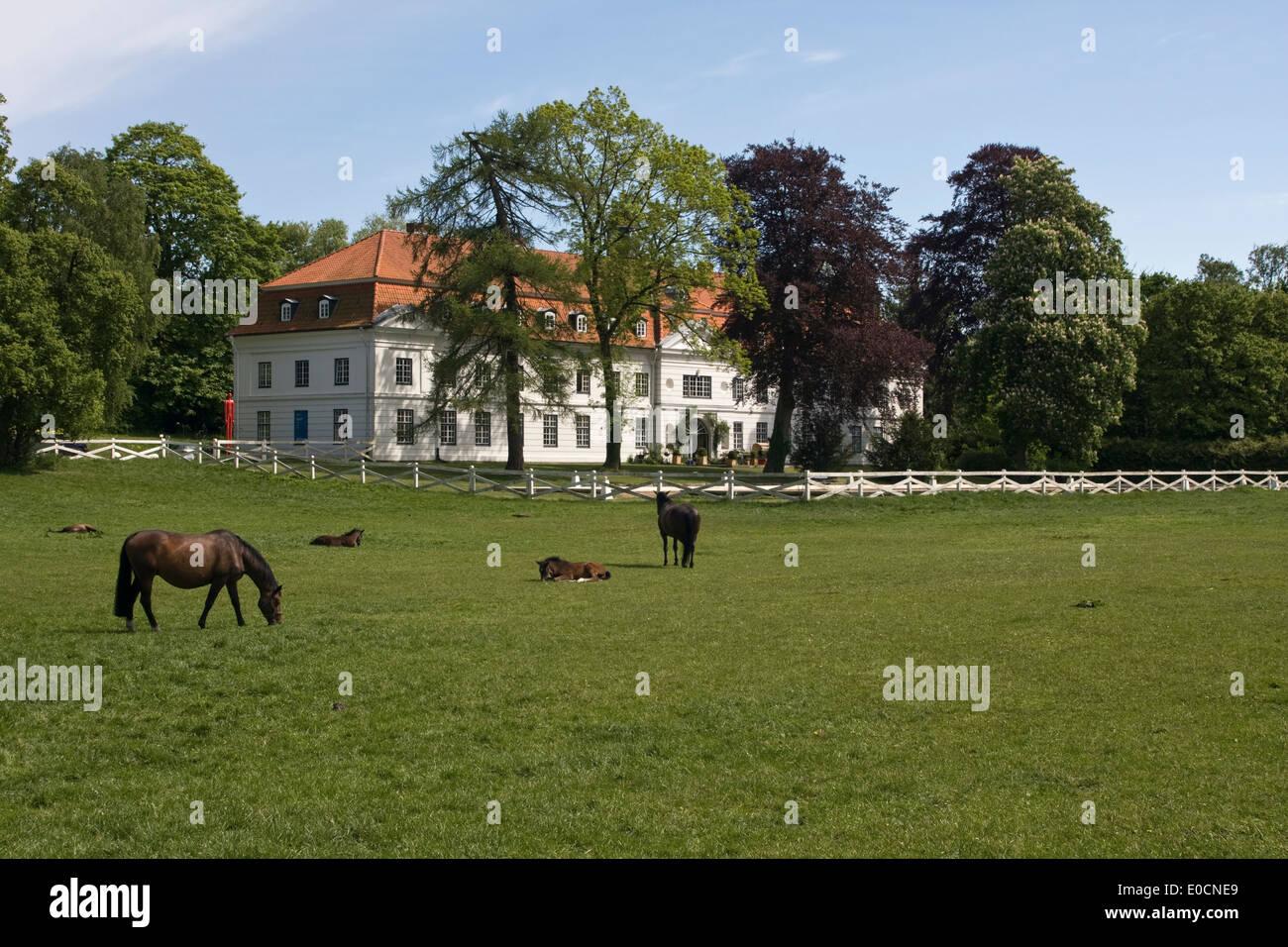 Europa, Deutschland, Schleswig Holstein, Panker, Gut Panker - Stock Image