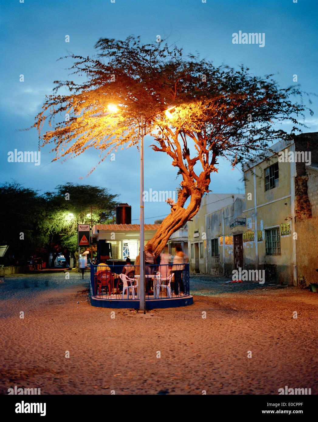 Bar under acacia tree at Praia de Dante, Sal Rei, Boa Vista, Ilhas de Barlavento, Republic of Cape Verde, Africa Stock Photo