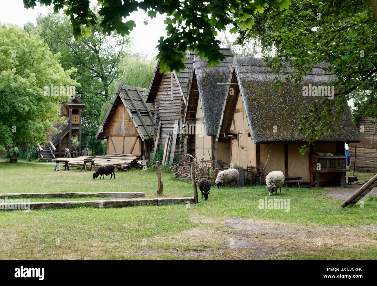 Open Air Museum, Middle Ages Village Centre Castrum Turglowe, Torgelow, Mecklenburg-Western Pomerania, Germany - Stock Image