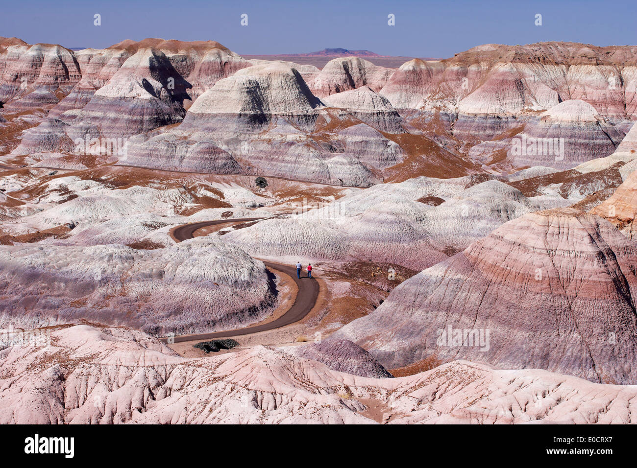 Blue Mesa, Petrified Forest National Park, Arizona, USA, America - Stock Image