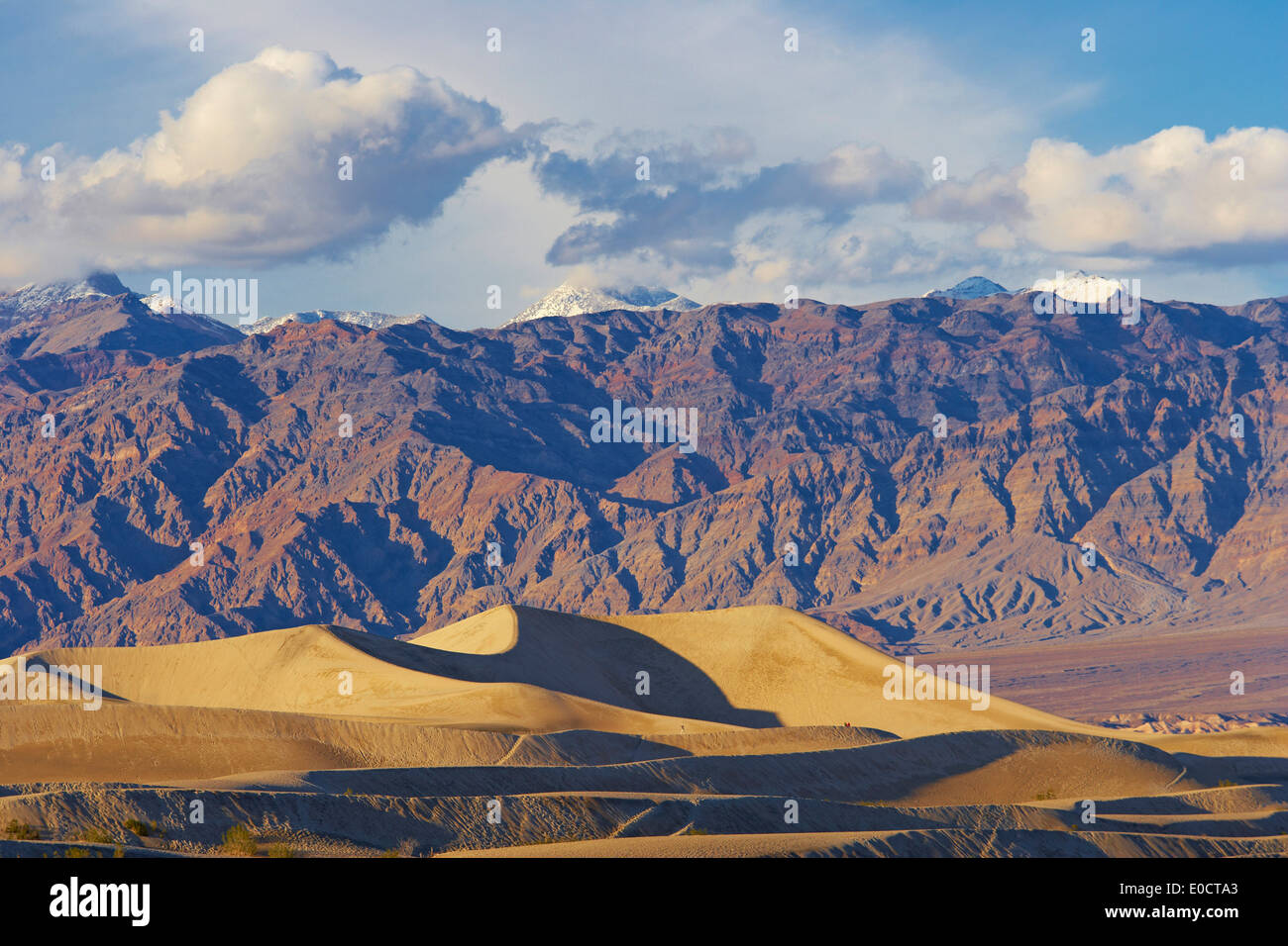 View over Mesquite Flat Sand Dunes onto Amargosa Range in the evening, Death Valley National Park, California, USA, America - Stock Image