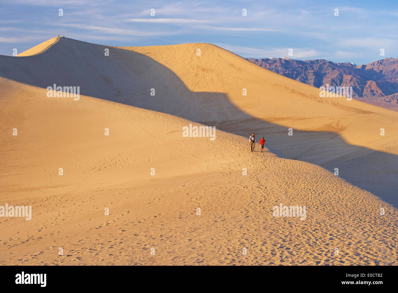 View over Mesquite Flat Sand Dunes onto Amargosa Range in the evening light, Death Valley National Park, California, USA, Americ - Stock Image