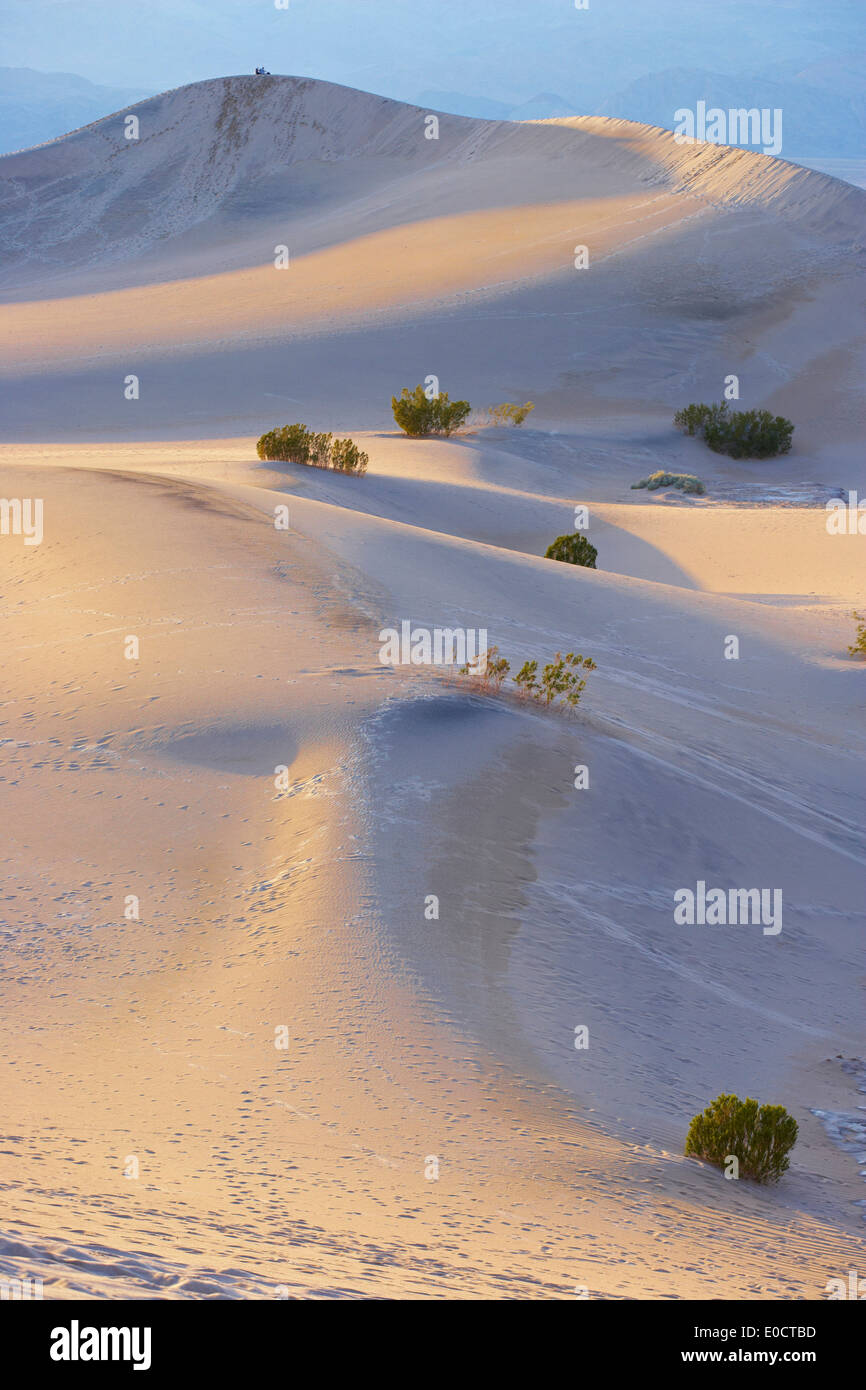 View of Mesquite Flat Sand Dunes in the evening, Death Valley National Park, California, USA, America - Stock Image