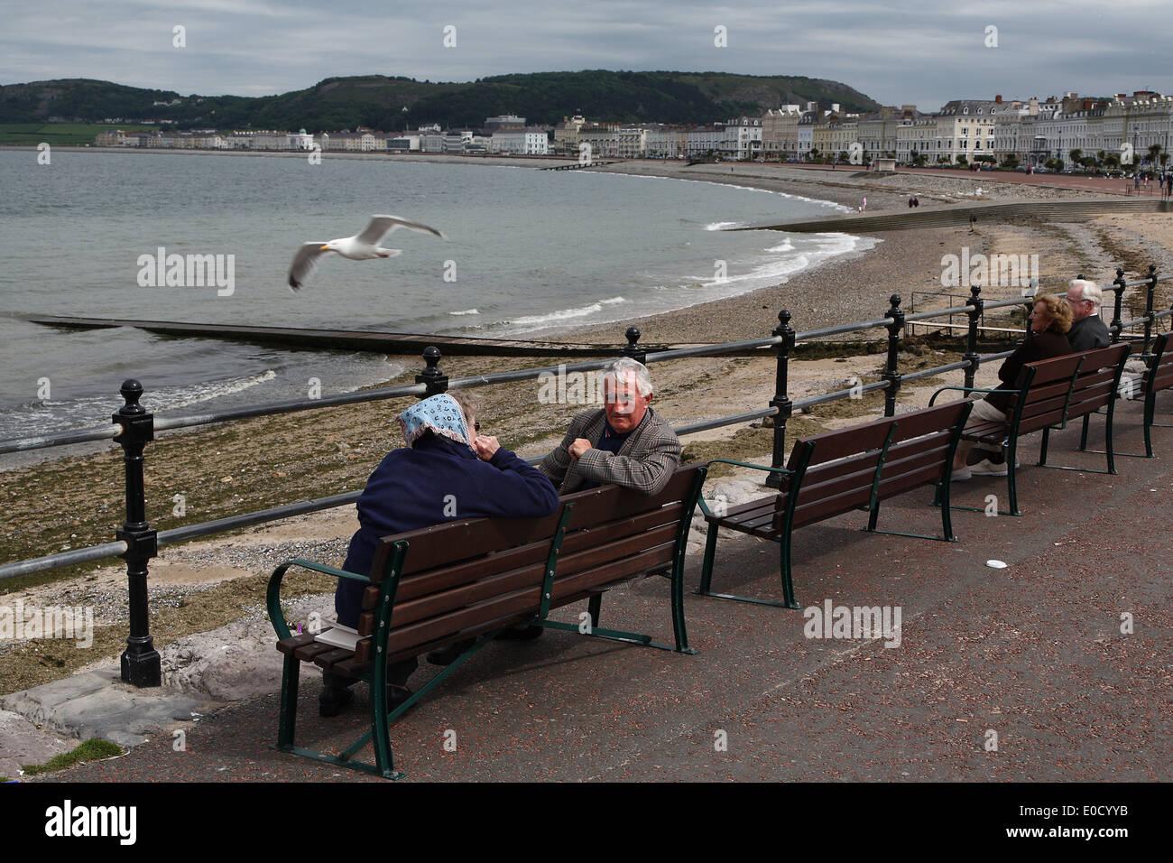 Benches on the promenade of seaside resort Llandudno, North Wales, Great Britain, Europe - Stock Image