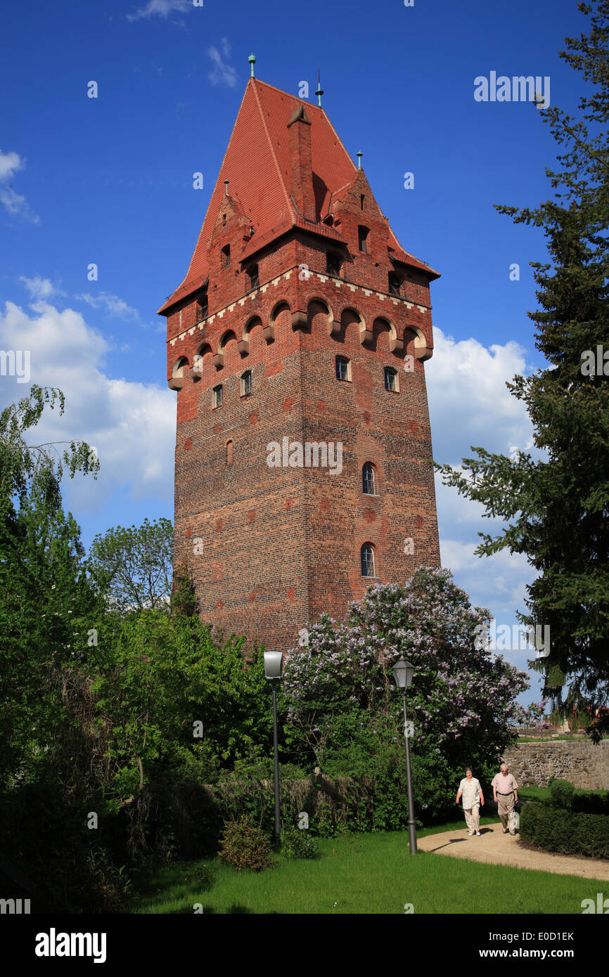 Bergfried tower, Tangermuende,  Tangermünde, Altmark,  Sachsen-Anhalt, Germany, Europe Stock Photo