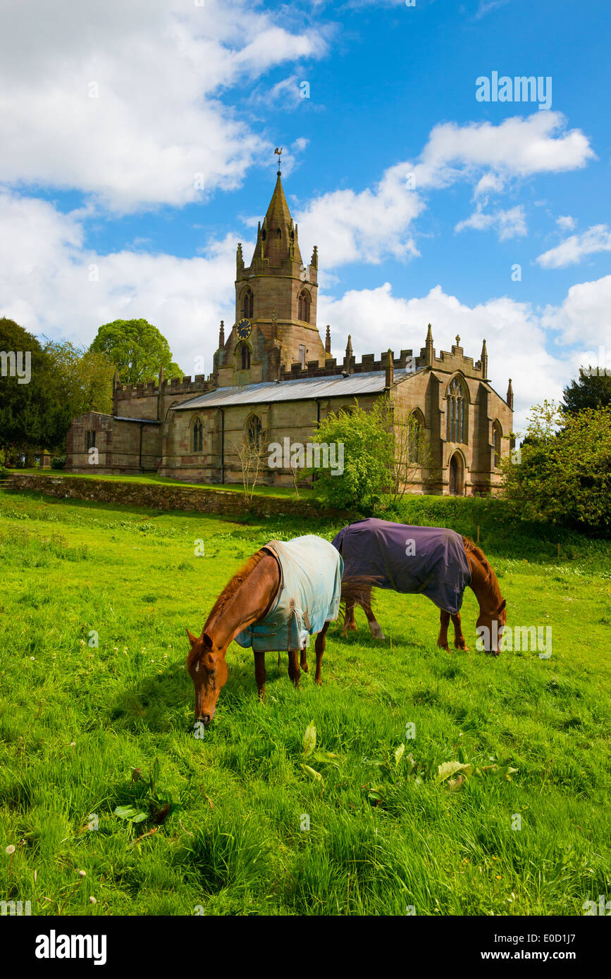 Horses grazing outside St Bartholomews church, in the village of Tong, Shropshire, England - Stock Image