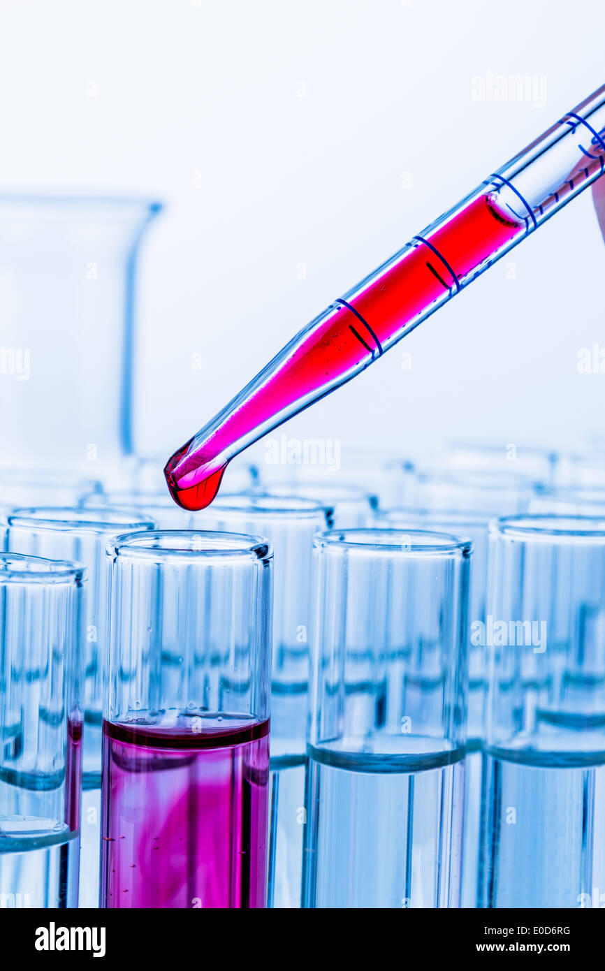 Many test tubes with an attempt in a research lab of a university. Symbolic photo for learn and do research., Viele Reagenzglaes - Stock Image